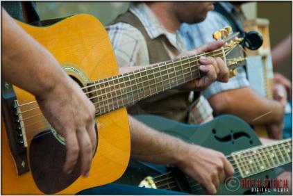 Bluegrass Band: Guitars
