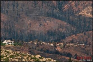 7.6.12 - Waldo Canyon Fire: Aftermath