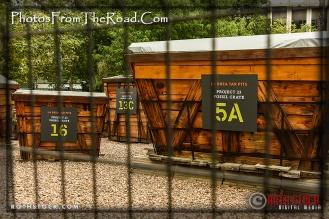 La Brea Tar Pits & Museum